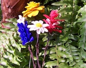 Texas Wildflowers on Barbed Wire Stems....Bluebonnet, Yellow Rose, Indian Paintbrush, Mexican Hat, Firewheel, cone flower and more...