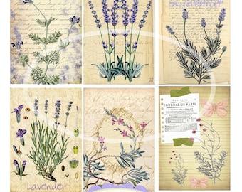 Lavender -Digital Scrapbooking-Collage Sheet-Digital Image-Digital Card...