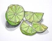 Fresh Lime, original watercolor, fruits, citrus