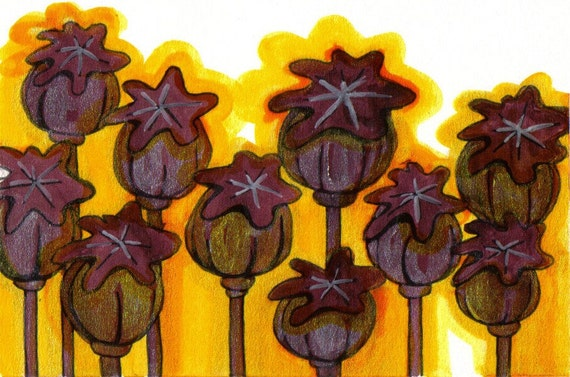 Field of Gold, poppy pods illustration, acrylic/ink, SALE