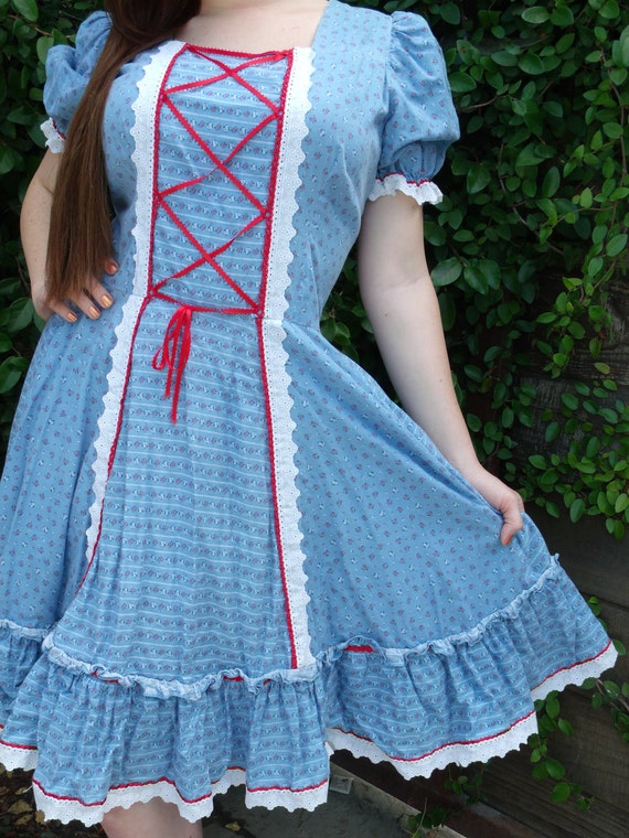 Vintage Red White and Blue Day Dress Storybook Dress American Picnic dress