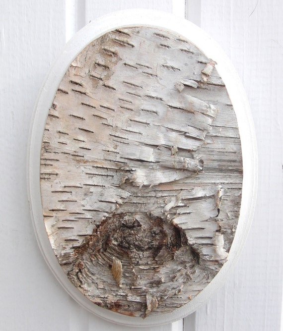 Birch bark on wood wall hanging, Branchmark