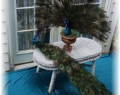 Custom Extravagant Life Size Peacock in your choice of style