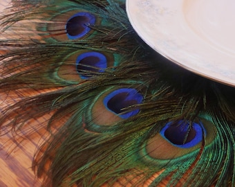 "Peacock Feather Mat as seen on TLC's FOUR WEDDINGS - 10""-22"""