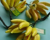 Vintage Millinery Fruit, Yellow, Bananas, Peppers