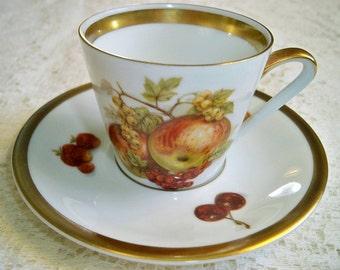 Vintage Schumann Bavaria Harvest Teacup and Saucer