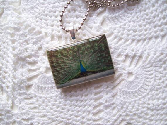 Sale - PEACOCK BIRD Pendant/PEACOCK Necklace/Peacock Pendant/Bird Pendant/Polymer Clay Pendant