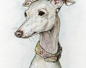 A matter of time - Italian Greyhound Dog Print