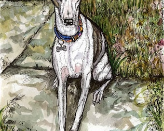 Ill do anything for a choccy drop - Whippet Art Dog print