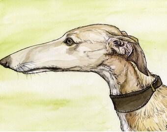 Serenity - Greyhound Dog Art Print