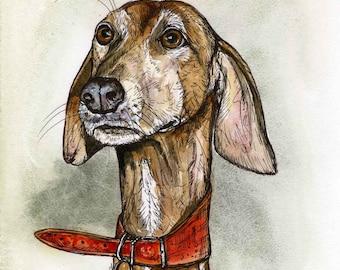 Azawakh Hound Dog Print - 5 x 7 inch