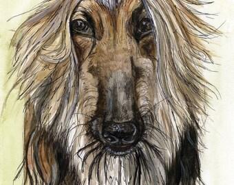 A Little Impartial - Afghan Hound Dog Print Art
