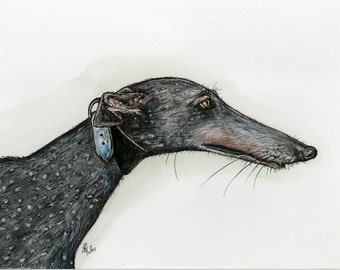 A Little Favorable - Greyhound Dog Print 5 x 7 inch