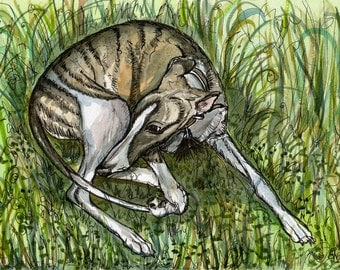 A Little Secret -Whippet Puppy Art Dog Print