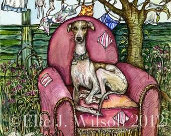 Dog Art -  Whippet Print