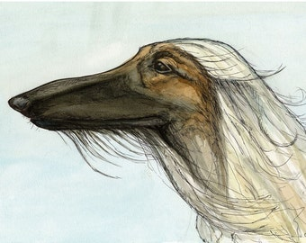 A Little Aspiration - Afghan Hound Art Dog Print