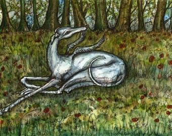 Greyhound Art Dog Print