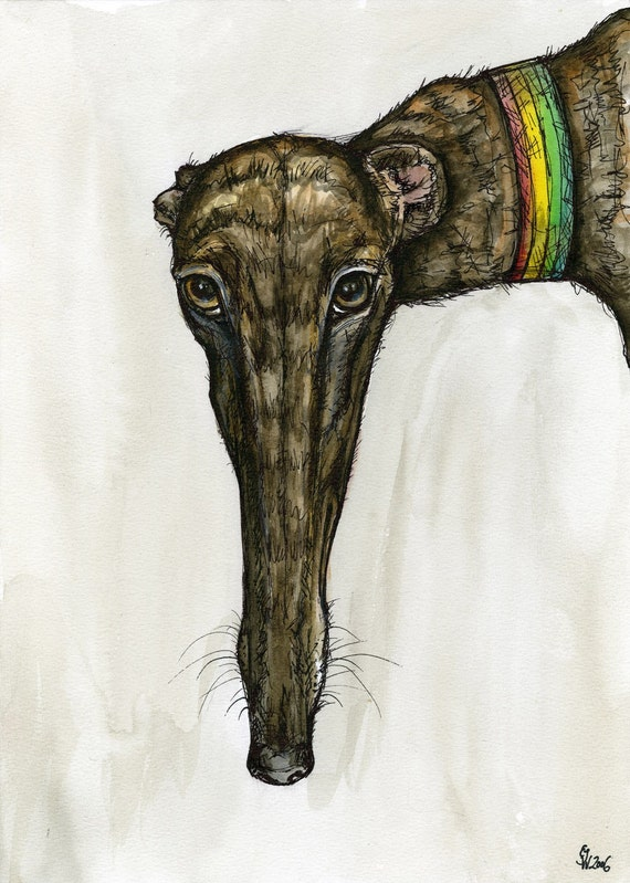 Surreptitiously- Greyhound Dog Art Print