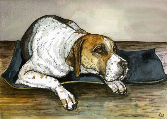 The Foxhound thought for a moment - FOXHOUND PRINT