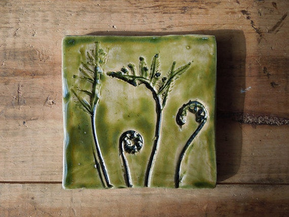 Moving Sale Sensitive Fern Fiddlehead Tile 4X4- In Stock Ready to Ship