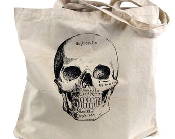 Skull Tote Bag - Anatomical Skull Illustration on a Natural Canvas Tote Bag