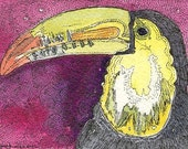 ACEO Bird Toucan  from Theodora