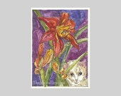 Little White Kitty Cat and Daylily ACEO Signed Limited Edition Print by Theodora