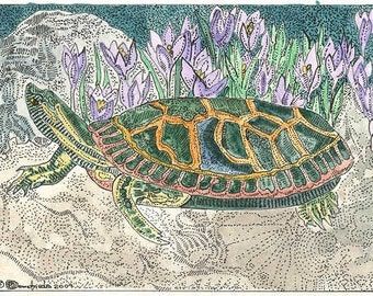 Turtle ACEO from Theodora