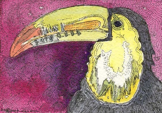 ACEO Bird Toucan  from Theodora