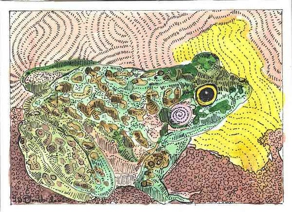 Mr.Frog comes out of Hiding ACEO print from Theodora