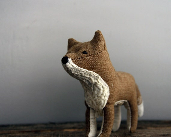 coyote daydreamer.