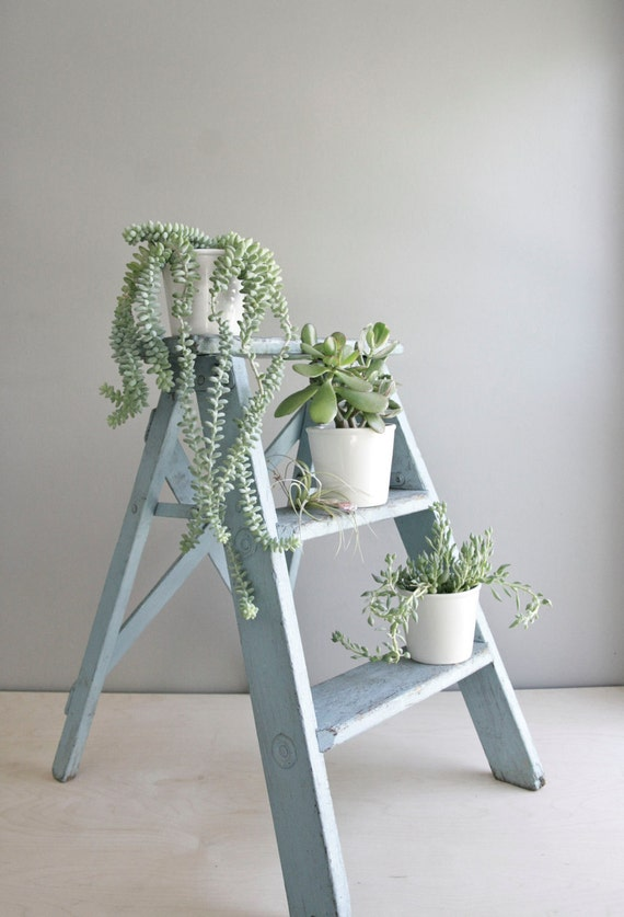 vintage aqua painter's ladder