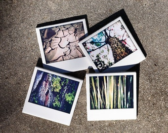 Nature Coasters - Set of 4 Ceramic Drink Coasters