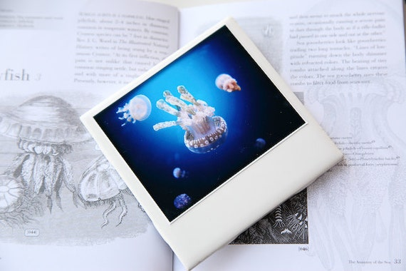 Drink Coasters, Underwater Photography, Set of 4 Ceramic Drink Coasters