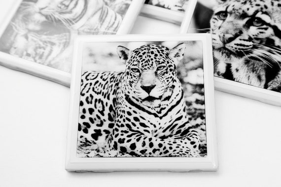 Leopard Tile Coasters, Set of 4 Ceramic Drink coasters. Black and White Big Exotic cats