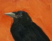 CROW PORTRAIT - 5 x 7 - Blackbird Raven BIRD Art Giclee print from my original oil painting