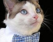 Size (M) CUSTOMIZED - Pet Bow Tie