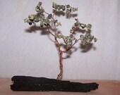 Brazilian Serpentine Dreaming Tree