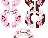 Ladybug Pink and Brown Closet Clothing Dividers - Set of 5 Assorted for Girls
