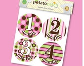 Baby Monthly Shirt Stickers - Modern Pop Girls Candy Stripe
