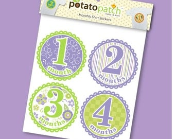 Baby Monthly Milestone Stickers for Shirts - Lulu for Girls
