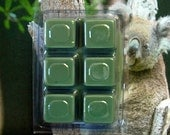 Eucalyptus Breakaway Clamshell Soy Wax Tart Melts