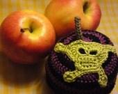SPECIAL EDITION Teacher's Pet knit  and crochet fruit pouch - PUNKY PURPLE STRIPES