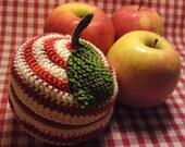 Teacher's Pet knit and crochet fruit pouch - CANDY STRIPES