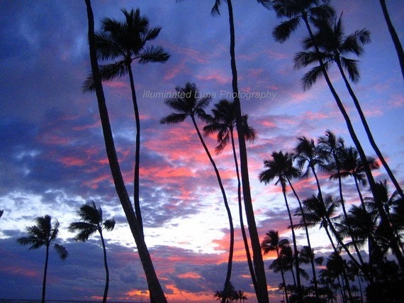 SALE Sunset Over Waikiki - 16 x 20 Fine Art Photograph on Canvas, Ready to Hang, Palm Trees in Oahu, Hawaii by IlluminatedLuna on Etsy