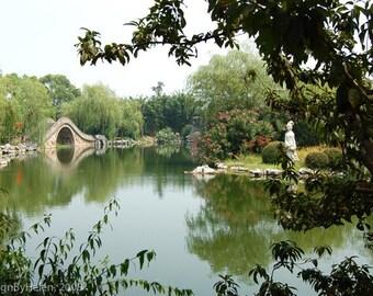 Water Garden, China, 10 x 8 Photo Art Print, FREE Matting
