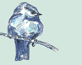 Bird Drawing - New Blue Bird - Bird Wall Decor