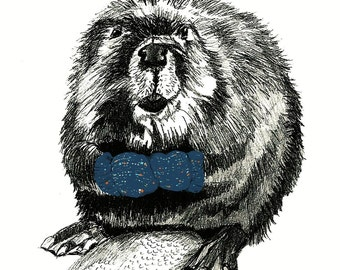 Beaver Drawing - Beavers Love Blue Mittens Illustration
