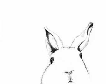 White Rabbit Drawing  - Where's Alice - Children's Wall Art