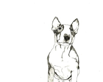 Bull Terrier - Print of Original Drawing - Dog Art